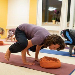 Ausbildungsthemen-Yoga-Vidya-Ausbildung-in-Kiel
